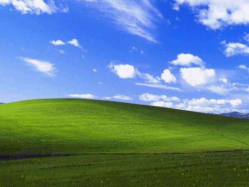 Koniec ery Windows XP – w Redmond odetchnęli z ulgą