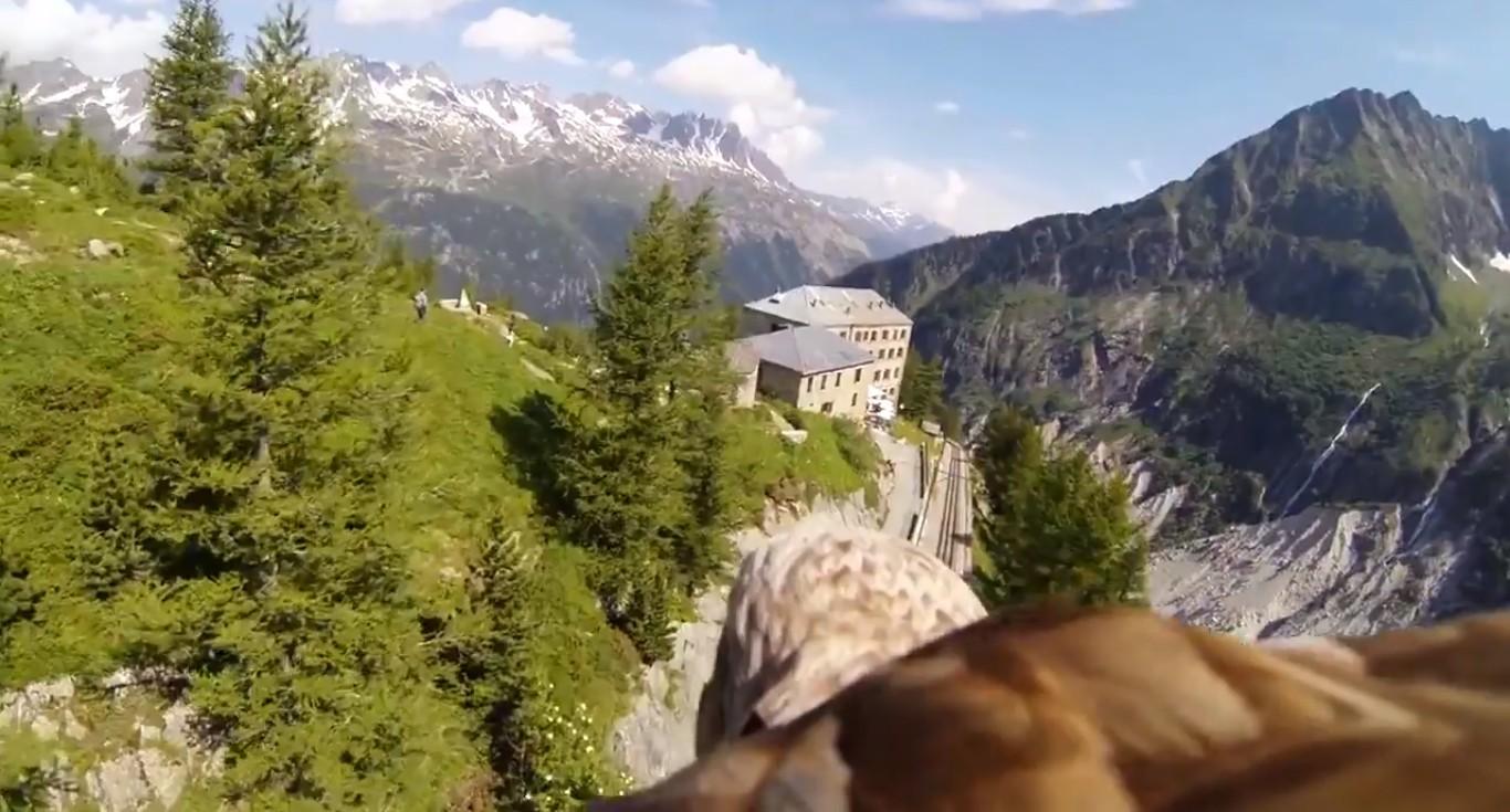 Trzy najlepsze zastosowania kamerek GoPro, czyli filmy które zwalają z nóg