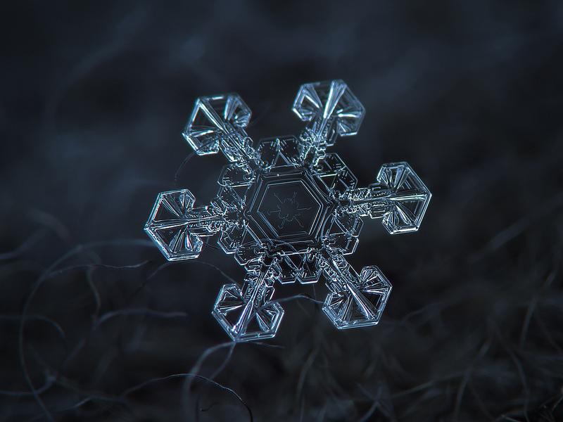 Takie zdjęcia płatków śniegu możesz zrobić sam. Wystarczy zwykły aparat kompaktowy