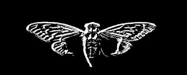 Cicada 3301 – zagadka ruszyła ponownie. Podejmiesz się?