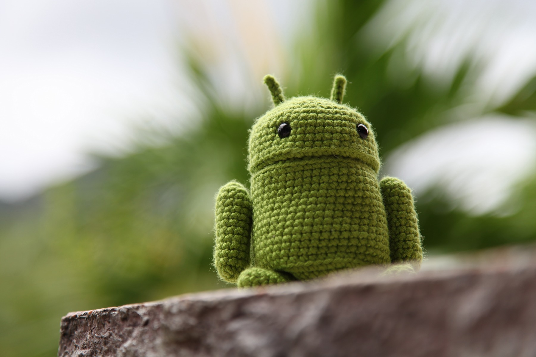 Android 4.4 KitKat to wciąż jedynie… ciekawostka przyrodnicza
