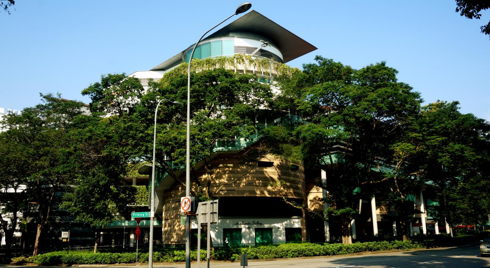 Siłownia, basen, fotele do masażu i łóżka do spania – jak zadbała o mnie singapurska uczelnia