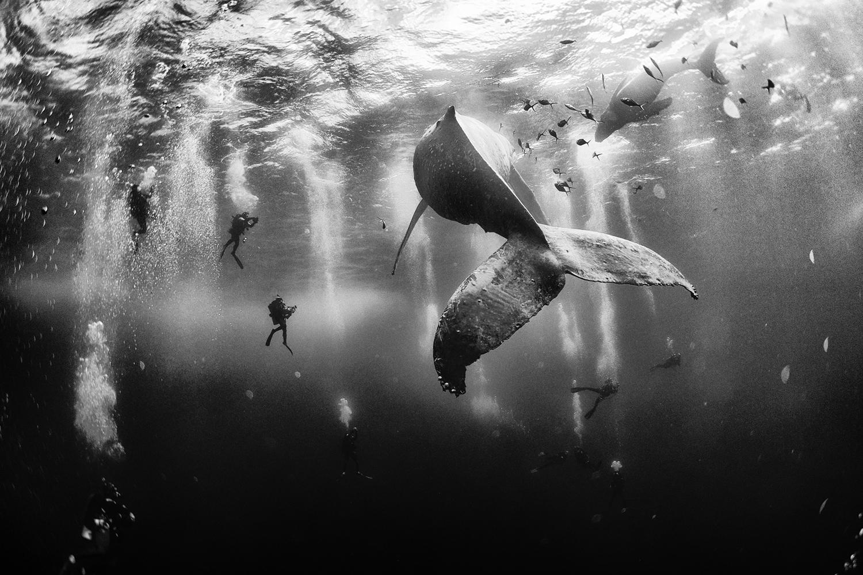 Piękne fotografie i sukces Polaka w National Geographic Traveler Photo 2015