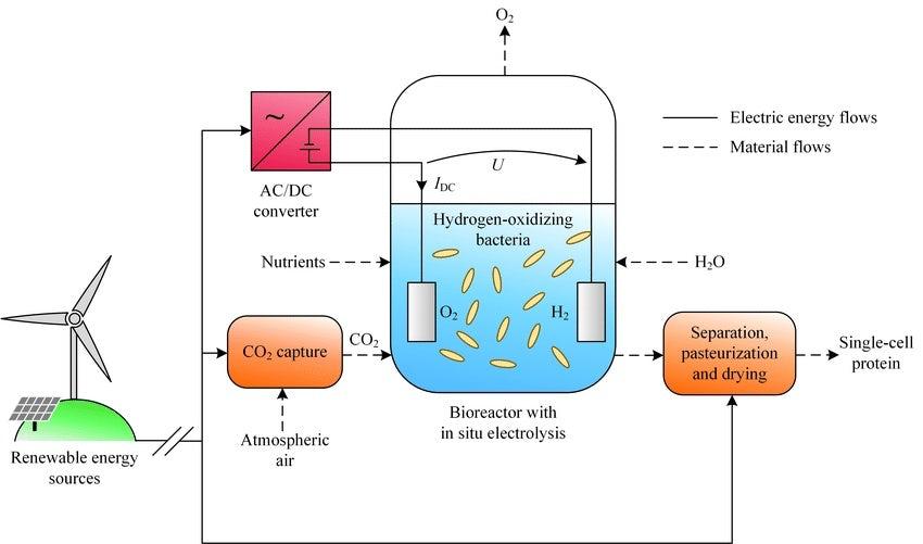 bioreaktor jedzenie z powietrza