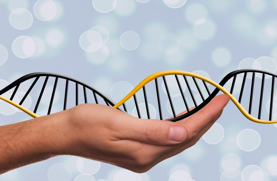 Konsumenckie badania genetyczne, czyli jak postanowiłem sprawdzić, ile jest we mnie neandertalczyka