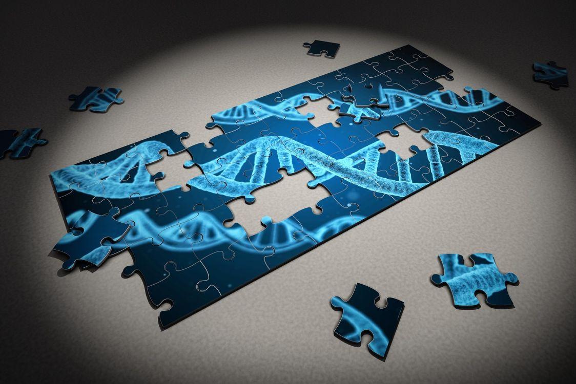 Czego dowiedziałem się ze swoich badań genetycznych