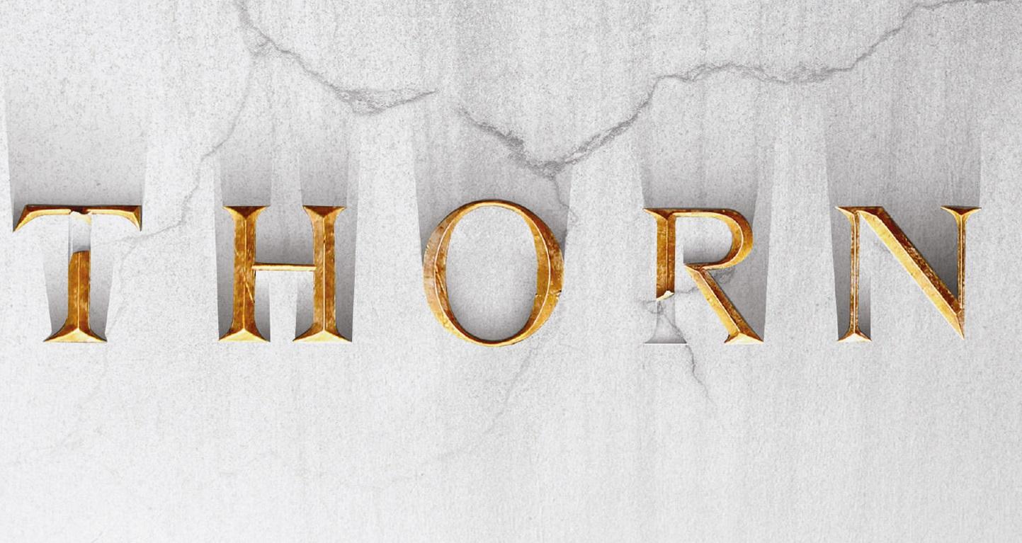 """Bądź orłem, a nie kurą, czyli """"THORN"""" – powieść motywacyjna Jasona Hunta. Recenzja sPlay"""