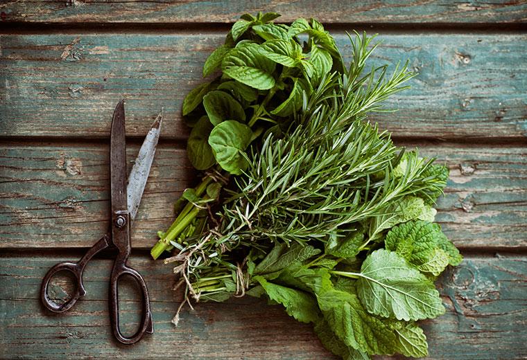 Postaw na zioła i przyprawy