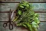 Fot. do artykułu: 'Postaw na zioła i ...'