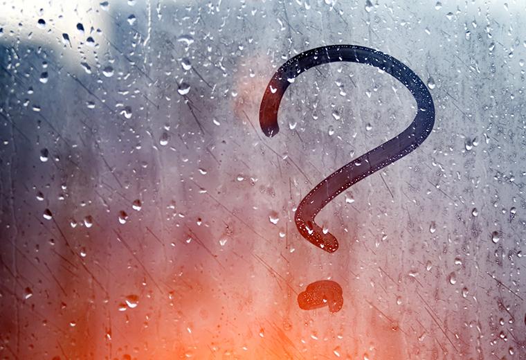 Fot. do artykułu: 'FAQ - Jak wzmocnić ...'