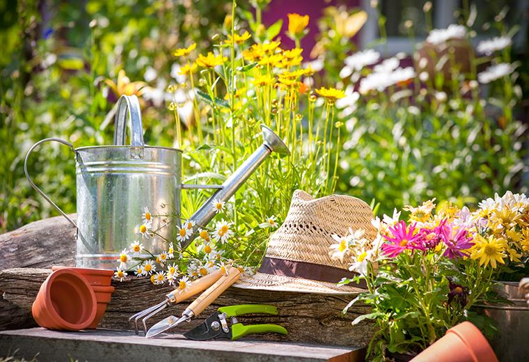 Hortiterapia - lecznicze działanie ogrodów