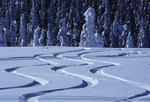 Fot. do artykułu: 'Najczęstsze zimowe urazy'