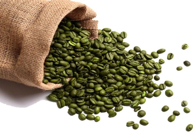 Fot. do artykułu: 'Zielona kawa'