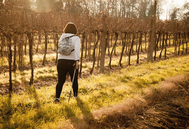 Nordic Walking - sposób na zdrowie
