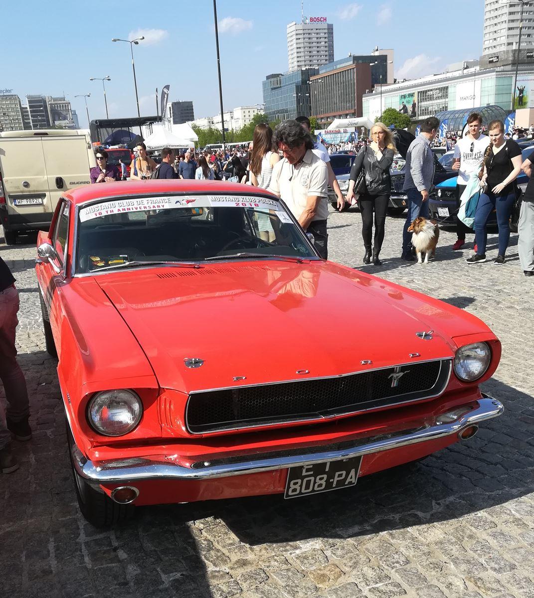 Mustang-Zlot-18