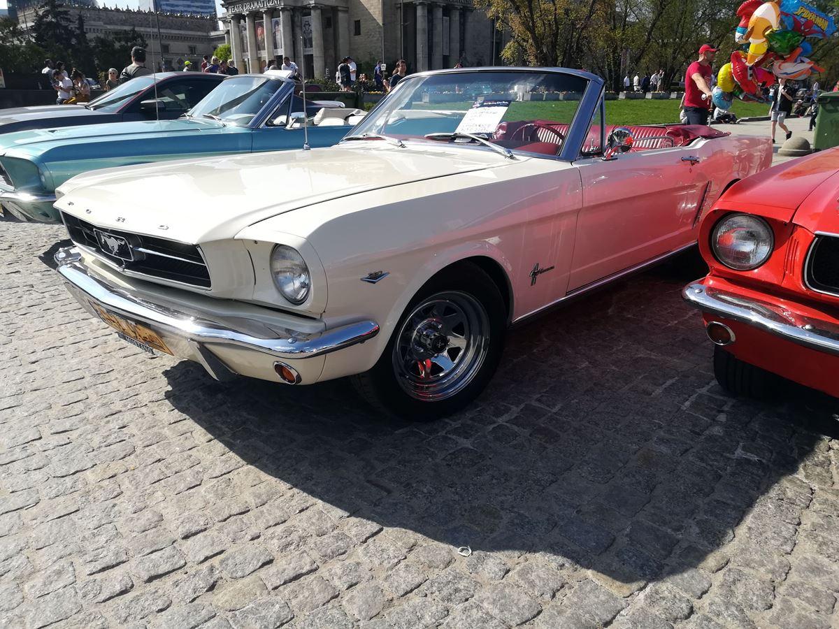 Mustang-Zlot-15