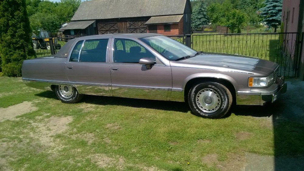 auta z USA na sprzedaż
