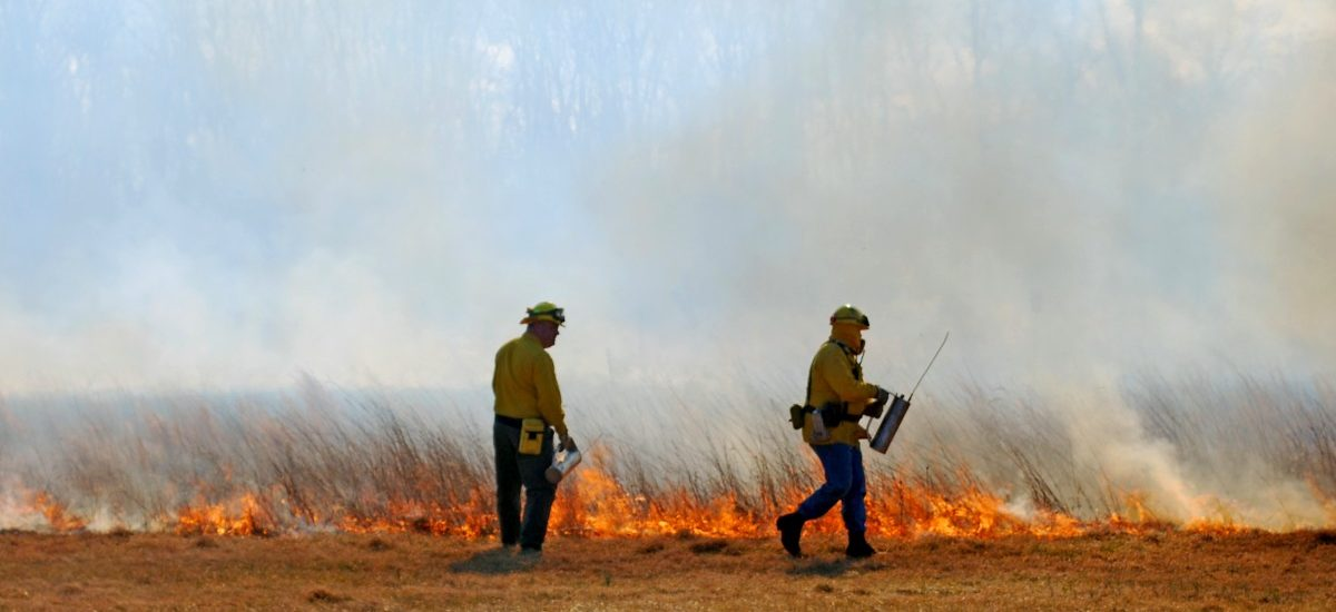Wypalanie traw i ściernisk jest niebezpieczne i może przynieść opłakane skutki!