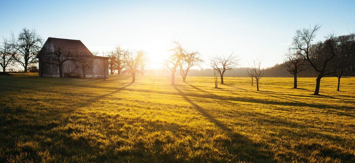 Czy można kupić działkę rolną, nie będąc rolnikiem?