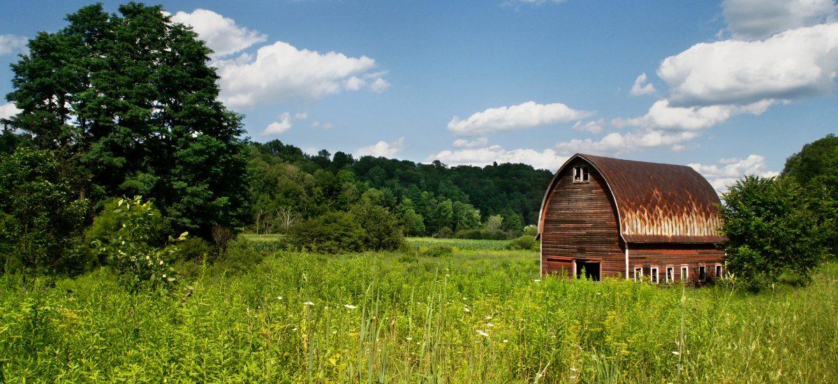 Nabycie przez zasiedzenie – kiedy nieruchomość staje się nasza?