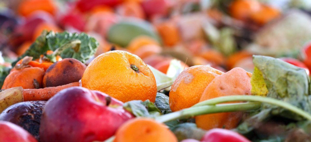 We Francji nakazano rozdawać jedzenie zamiast niszczenia lub wyrzucania go