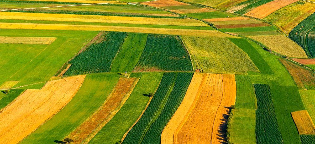 Moratorium na sprzedaż państwowych gruntów rolnych