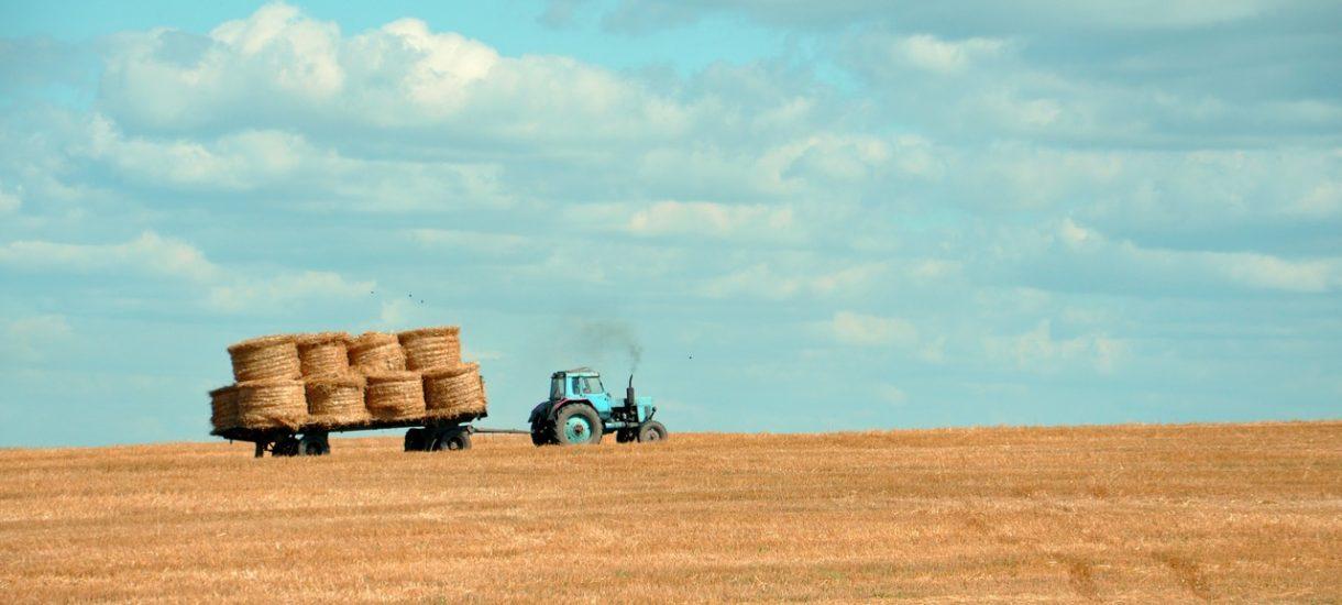 Rozwód rolników? Tylko za zgodą prezesa Agencji Nieruchomości Rolnych