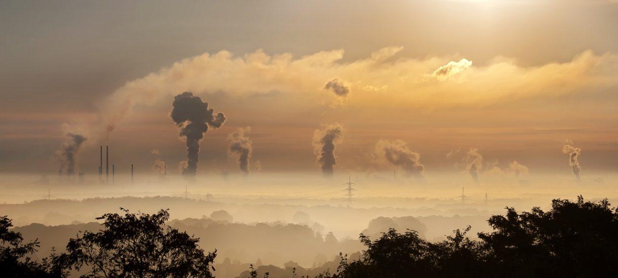 Ministerstwo Energii wie jak zwalczyć smog, ale mieszkańcy Legionowa już wzięli sprawę w swoje ręce