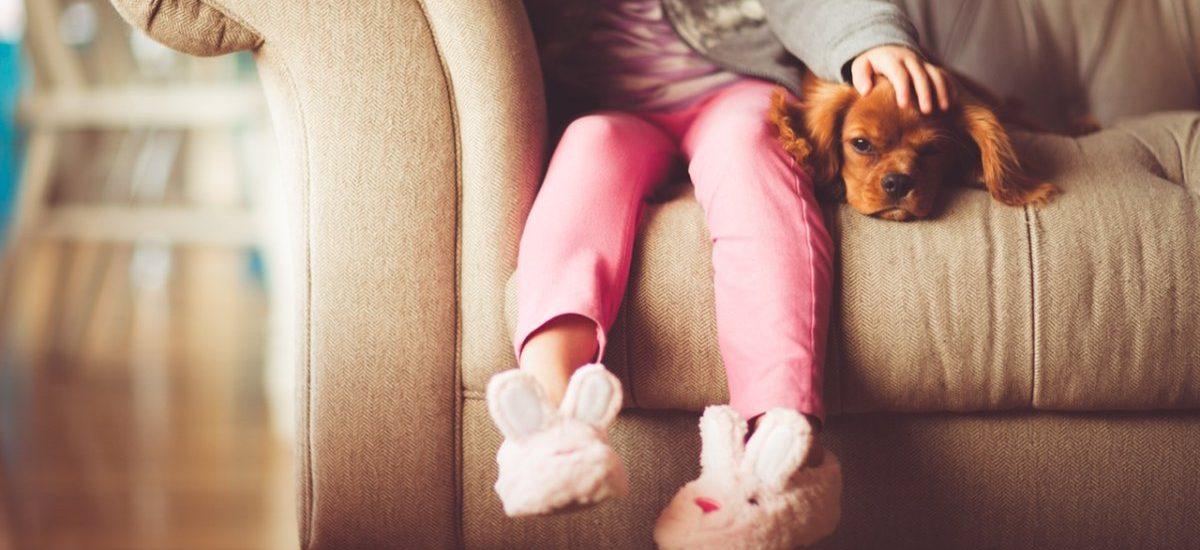 Adoptly – Tinder dla adopcji – to nieśmieszny żart czy przyszłość, która nadeszła?
