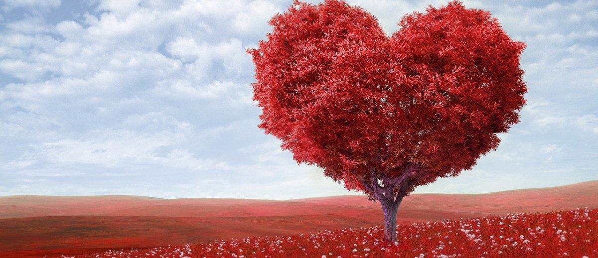 """Rozrusznik serca może """"sypać"""" w sądzie? Ciekawy problem technologiczno-prawny"""