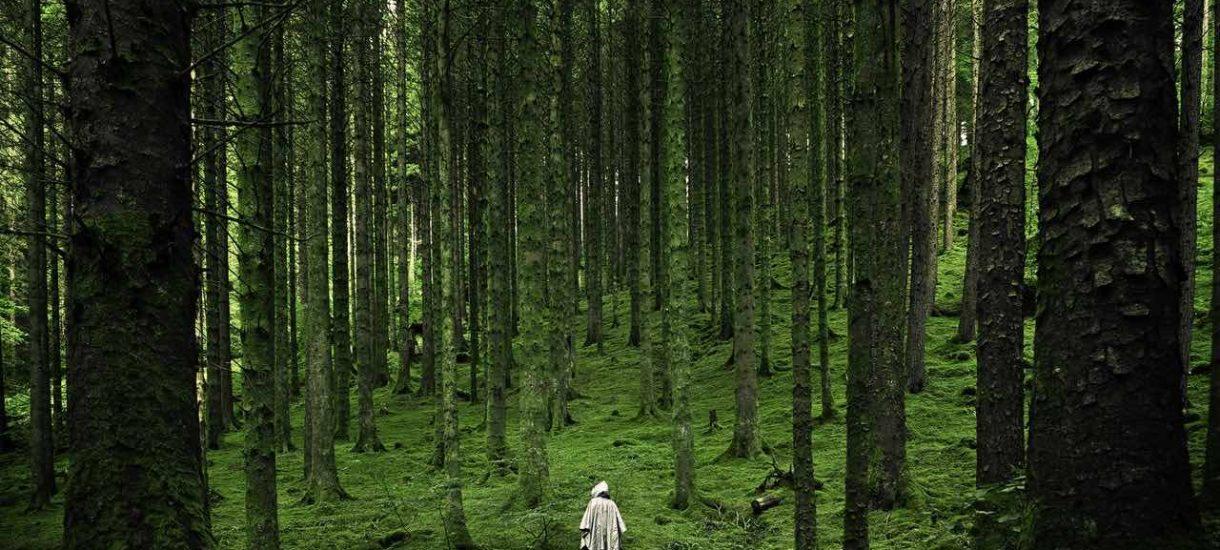 ZUS dalej w lesie. Pisma wysyłane do przedsiębiorców sązupełnie niezrozumiałe i naszpikowane nieistniejącymi rygorami