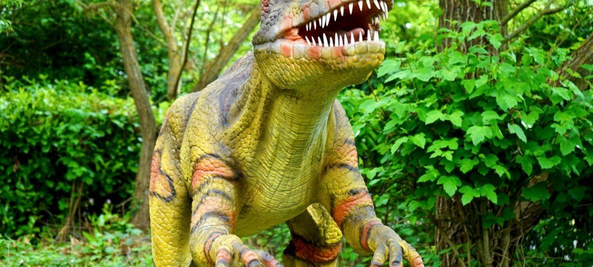 Ewa Kopacz o dinozaurach. Wystarczy posłuchać, by zrozumieć, czemu rządzi PiS