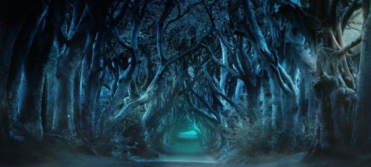 W tym roku nie ma co liczyć na wcześniejsze spoilery Gry o tron od recenzentów albo na piracką wersję w internecie