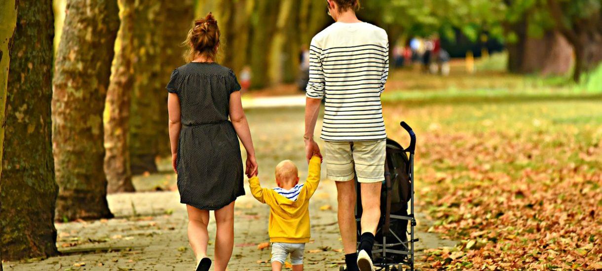 Program 800 plus na opiekunkę lub żłobek dla rodziców, którzy podejmą pracę