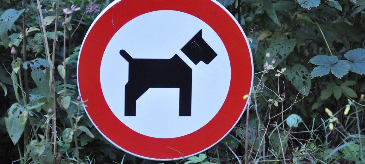 Zakaz wprowadzania psów jest nielegalny. Z psami można dowolnie korzystać z przestrzeni publicznej