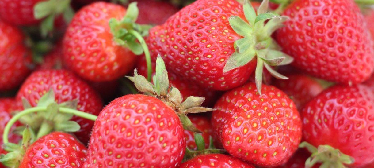 Zezwolenie na sprzedaż truskawek, czyli krótka instrukcja, jak uniknąć mandatu