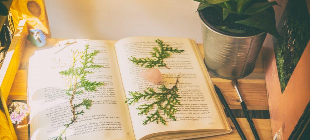 Zaczytani i Alior Bank rozbili bank, zebrano 603 000 książek dla polskich bibliotek