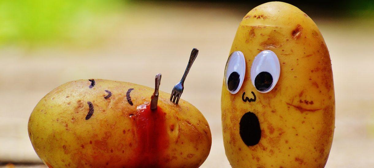 Nie wierzcie pseudo-dietetykom i telewizjom śniadaniowym. Zdrowe odżywianie jest – dosłownie – na wyciągniecie ręki