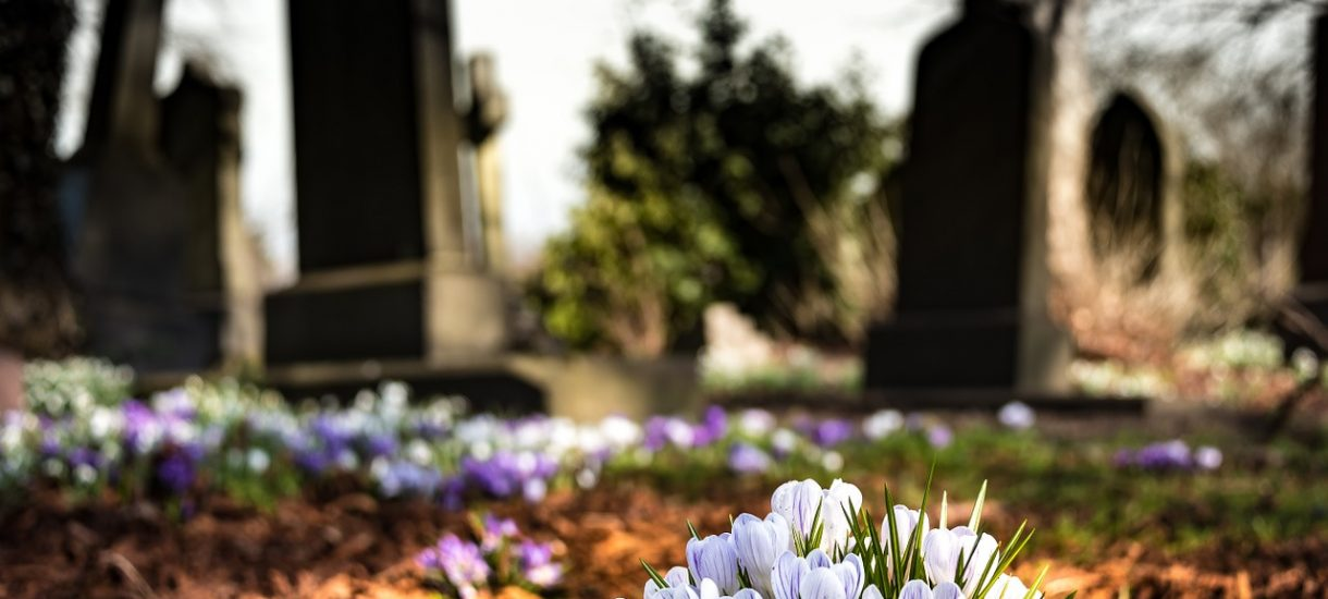 W Rzeszowie deweloper zwozi gruz na dawny cmentarz, a obok pamiątkowego krzyża postawił toi-toia