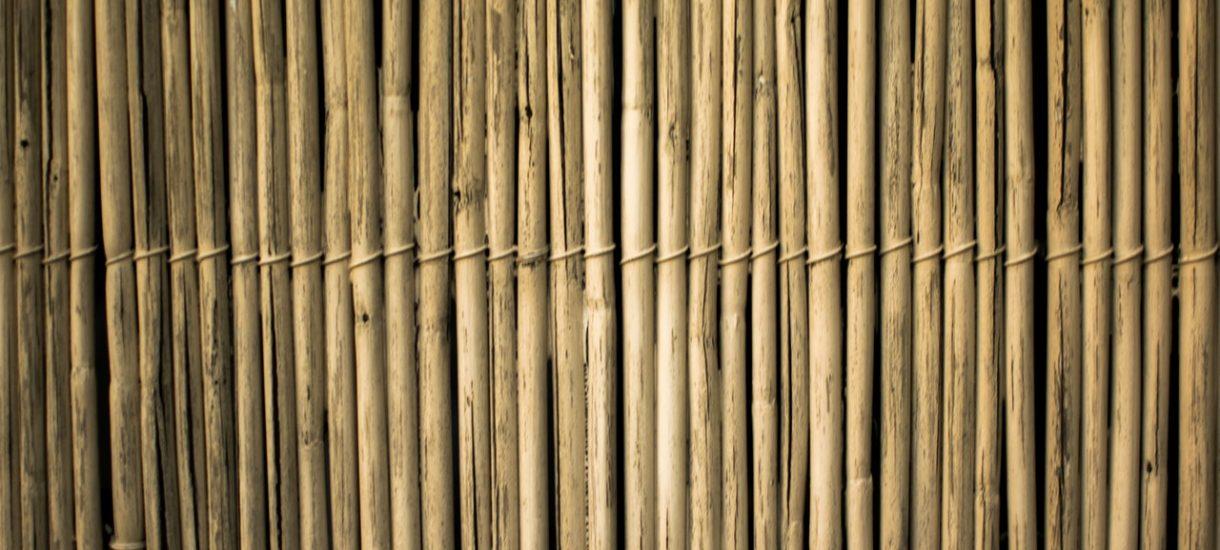 Zara skapitulowała w sprawie bambusa. Niepotrzebnie