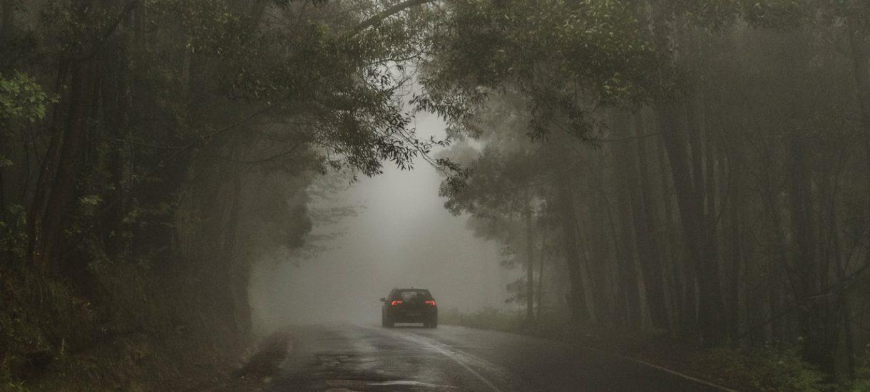 Posłowie chcą zniesienia obowiązku jazdy w dzień z włączonymi światłami. Czy taki wymóg ma w zasadzie jakikolwiek sens?