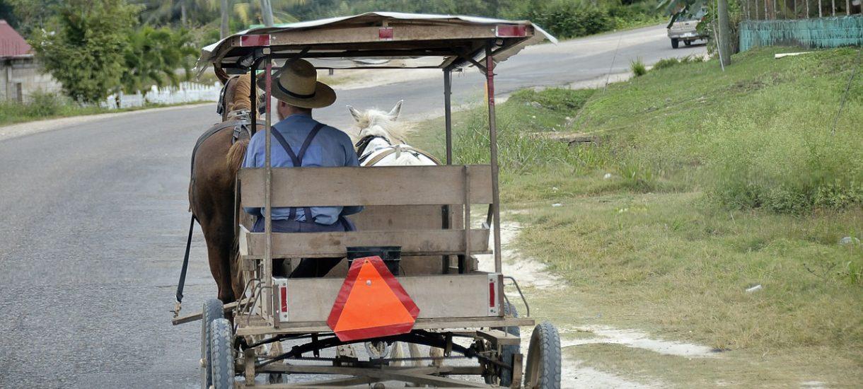 Nawet pijanego woźnicę wierny wierzchowiec sam dostarczy do domu. Kierowanie zaprzęgiem pod wpływem alkoholu od strony prawnej