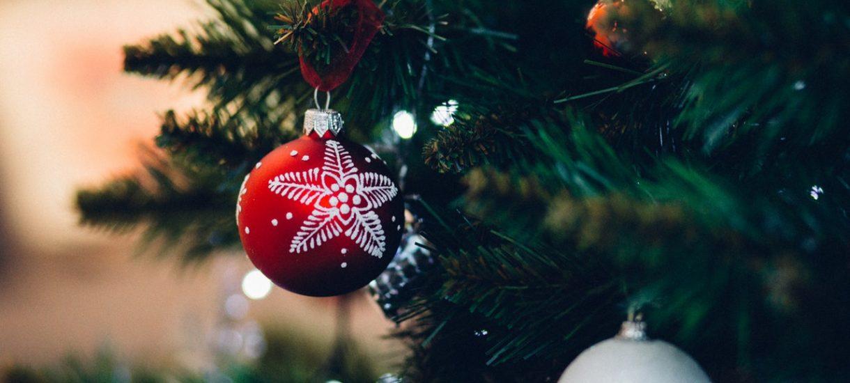 Volvo chce, by w święta Bożego Narodzenia Polacy nie zapominali o ekologii. Znowu wypożyczy choinki