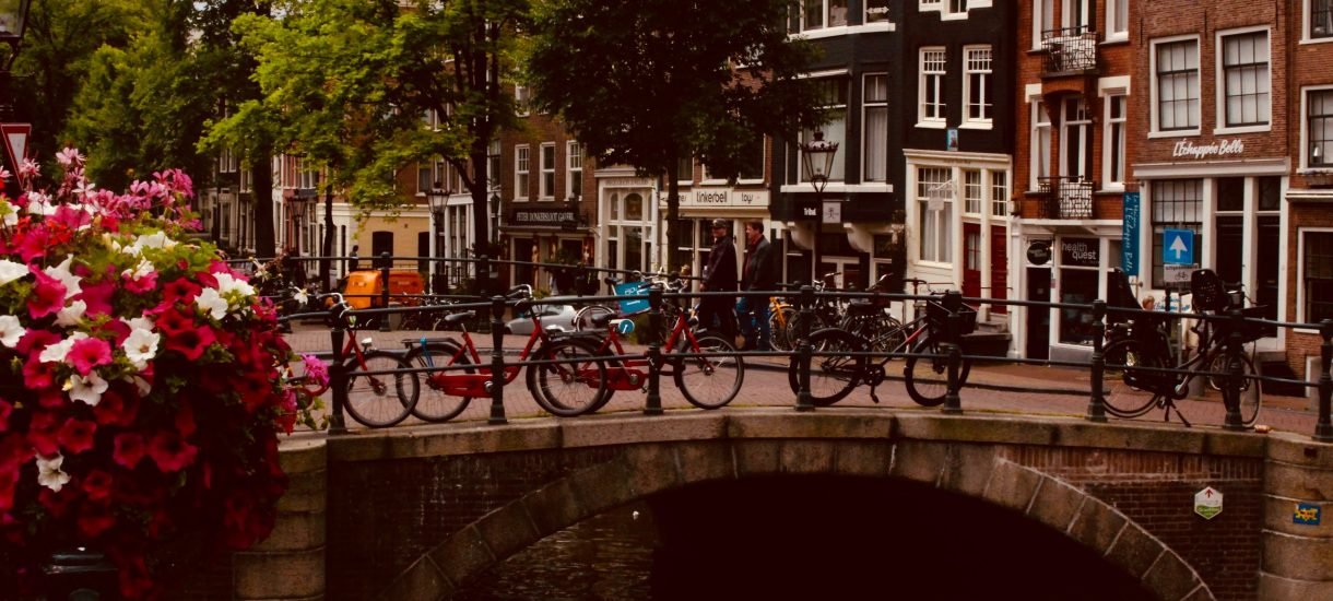 Jeden samochód na trzy rodziny. To nie science fiction, a realny projekt osiedla w Holandii