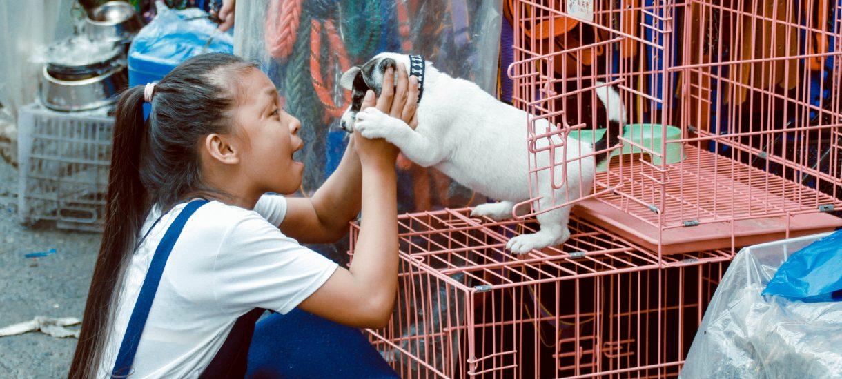 Epidemia koronawirusa zmusiła Chiny do walki z wiekową tradycją – władze wreszcie wprowadziły zakaz jedzenia dzikich zwierząt i handlu nimi