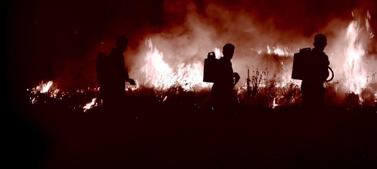 Nadchodzi kara administracyjna za wypalanie traw – aż do 30 000 złotych. To zły kierunek. Nie lepiej w końcu zmienić kodeks wykroczeń?