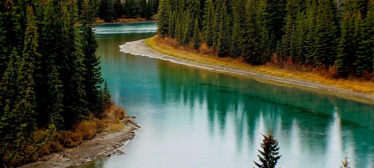 Kto jest właścicielem wód w Polsce i czy zawsze woda na działce będzie własnością jej gospodarza?