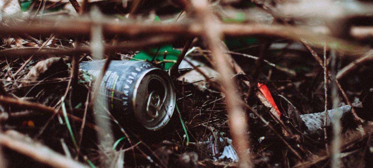 Będą wyższe kary za wyrzucanie śmieci do lasu. Minister środowiska zapowiada zaostrzenie przepisów