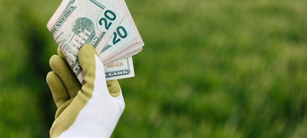 Dla Legii, Ziobry lub na warszawską Czajkę. 5 pomysłów na co wydać pieniądze z Funduszu Sprawiedliwości