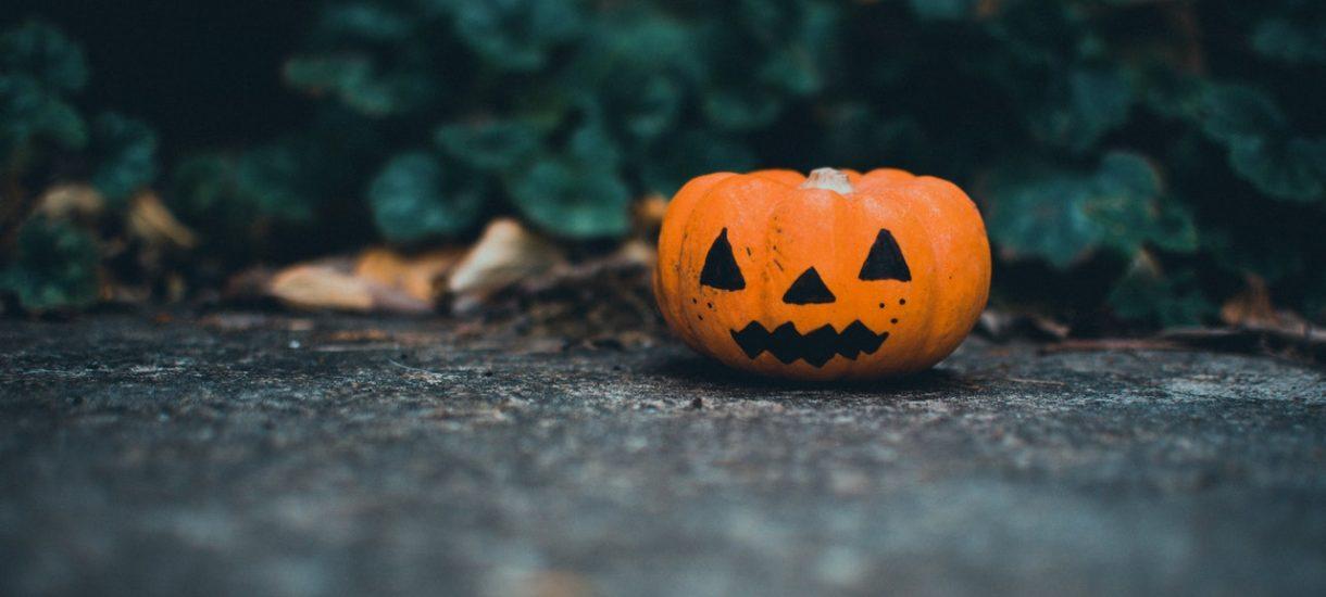 """Halloweeen w tym roku """"odwołane""""? CDC apelują o odwołanie typowych obchodów i zachęcają do… dekorowania dyni na świeżym powietrzu"""